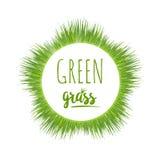 Realistyczny zielonej trawy gazon ilustracji
