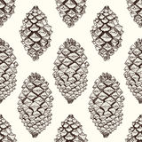 Realistycznych pinecones bezszwowy wzór szef kuchni rysujący ręki ilustraci wektor Obrazy Royalty Free