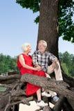 Realiteten avgick parsammanträde på det gamla trädet och att le lyckligt royaltyfria bilder