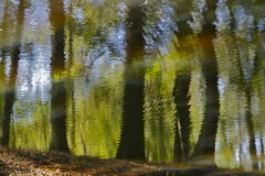 Reality as we see it. Trees and green reflected in water creating an impressionist painting image conveying the feeling of peace and reflection Stock Images