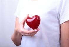 Realizar fêmea do doutor da medicina no coração vermelho do brinquedo das mãos e o estetoscópio dirigem Cardio- therapeutist, edu Imagem de Stock Royalty Free