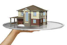Realtor service. Nice new house on the tray vector illustration