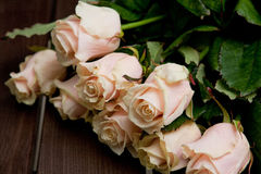 Сream roses. Bunch of beautiful cream-colored roses Royalty Free Stock Images