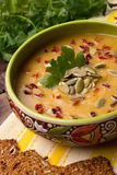 Сream soup from squash with thyme, paprika, pumpkin seeds, parsley and with rye crackers Stock Images