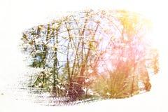 reamy en abstract beeld van witte bloemen dubbel blootstellingseffect Royalty-vrije Stock Fotografie