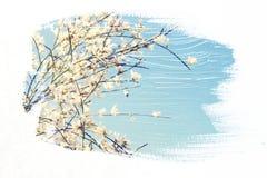 reamy en abstract beeld van witte bloemen dubbel blootstellingseffect Royalty-vrije Stock Afbeelding