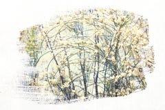 reamy en abstract beeld van witte bloemen dubbel blootstellingseffect Stock Afbeelding