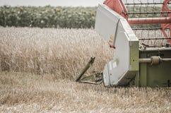 The reaper thresh the wheat. Under the summer sun Stock Photo