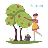 Reaping the harvest - flat design style illustration. Composition with a cute girl who collects apples from the tree. Efficient and successful farming business stock illustration