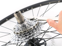 Rear bicycle cog cassette Stock Photos