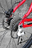 Rear bike cassette on the wheel with chain Stock Photos