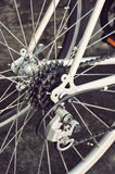 Rear bike cassette on the wheel Royalty Free Stock Photos