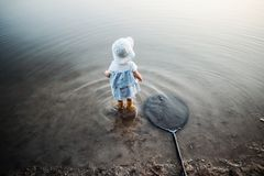 A rear view of small toddler girl standing in water in a lake, a fishing net next to her. A rear and high-angle view of small toddler girl standing in water in royalty free stock images