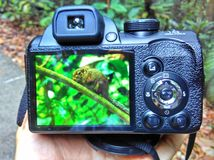 Rear LCD screen - digital camera Royalty Free Stock Images