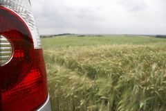 Rear light in cornfield - landscape. Cornfield in germany - rear light of a car in front - landscape format Royalty Free Stock Photography