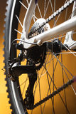 Rear bike cassette on the wheel with chain Stock Image