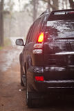 Rear side of the black SUV in forest.  Royalty Free Stock Photo