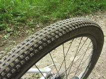 Rear tyre. Bicycle wheel on the road in the forest Royalty Free Stock Photo