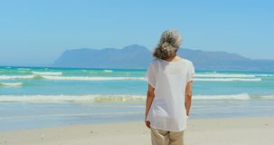 Rear view of active senior African American woman walking on beach in the sunshine 4k. Rear view of active senior African American woman walking on beach in the stock video