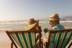 Senior couple having cocktail drink while relaxing on sun lounger at beach. Rear view of active senior couple having cocktail drink while relaxing on sun lounger royalty free stock images