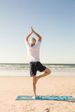 Rear view of active senior man practicing tree pose at beach Royalty Free Stock Photography