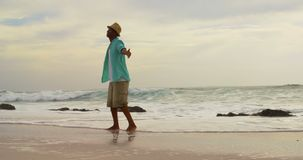 Rear view of African American man standing with arms outstretched on the beach 4k. Rear view of African American man standing with arms outstretched on the beach stock video