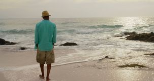 Rear view of African american man walking with hands in pocket on the beach 4k. Rear view of African american man walking with hands in pocket on the beach. He stock video footage