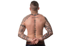 Rear View Of Back Tattooed Man. Back Rear View Tattooed Male On Isolated White Background Stock Images