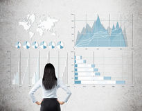 Rear view of black haired woman looking at blue and white graphs Stock Photography
