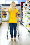Rear view of Blond woman pushing trolley Stock Photography