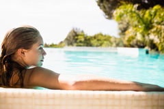Rear view of blonde in the pool Stock Photos