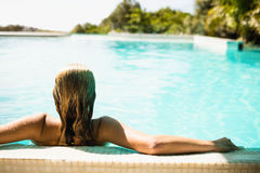 Rear view of blonde in the pool Royalty Free Stock Images