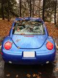 Rear view at blue Volkswagen Beetle. Blue Volkswagen Beetle covered with autumn leaves Stock Photo
