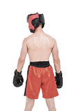 Rear view of boxer standing Stock Photos