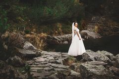 Rear view of bride in beautiful wedding dress standing on the lake shore with scenic mountain view in Poland royalty free stock photography