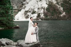 Rear view of bride and groom, standing on the lake shore with scenic mountain view in Poland. Morskie Oko stock image