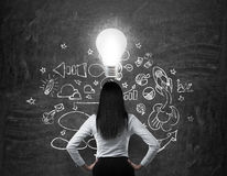 Rear view of the brunette business lady who is looking for new business ideas. Drawn business icons on the black chalk board and a light bulb as a concept of Royalty Free Stock Photo
