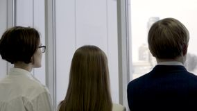 Rear view of business group standing in row and looking through window. Two females and male co workers standing stock footage