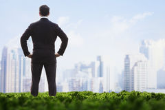 Rear view of businessman with hands on hips standing in a green field and looking at the city skyline Stock Images