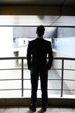 Rear view of businessman Stock Image