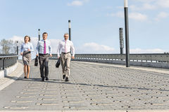 Rear view of businesspeople walking on bridge Royalty Free Stock Photography