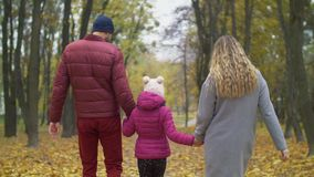 Happy family walking down road in autumn nature. Rear view of carefree family with elementary age daughter holding hands walking along path, covered with fallen stock video