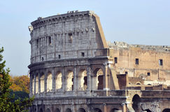 Rear view of coliseum rome Royalty Free Stock Photography