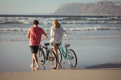 Rear view of couple with bicycles at beach Royalty Free Stock Photography