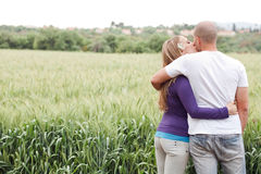 Rear view of couple, girl kissing the male Stock Photography
