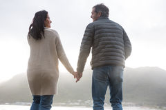 Rear view of couple holding hands on beach Royalty Free Stock Photography
