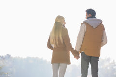 Rear view of couple holding hands while looking at each other in park Royalty Free Stock Photography