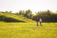 Rear view of couple holding hands walking in autumn countryside Stock Photos