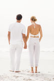 Rear view of couple standing on the beach Stock Image