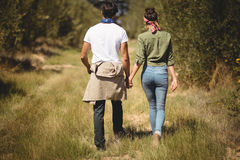 Rear view of couple walking at olive farm Royalty Free Stock Photography